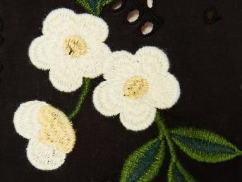 https://www.zara.com/uk/en/trf/tops/top-with-embroidered-dasies-c358032p4276074.html
